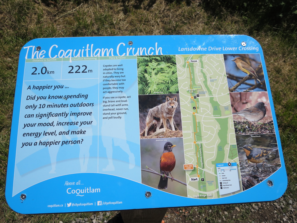 Interpretive Sign on Coquitlama Crunch