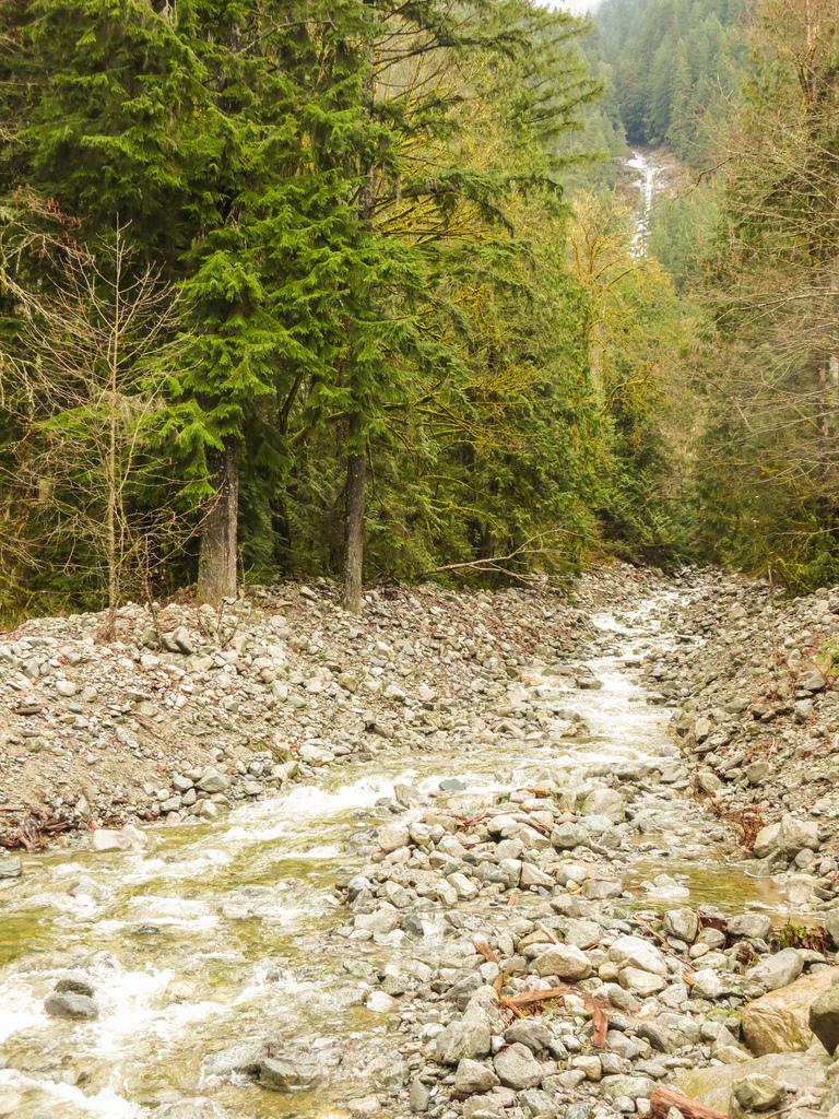 Swan Falls Creek