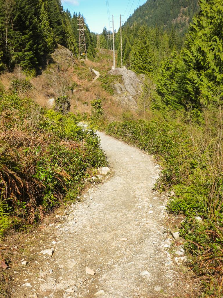 BL Trail 4