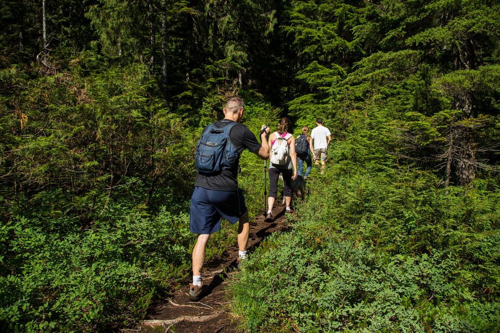 Lindsay Lake Trail 1