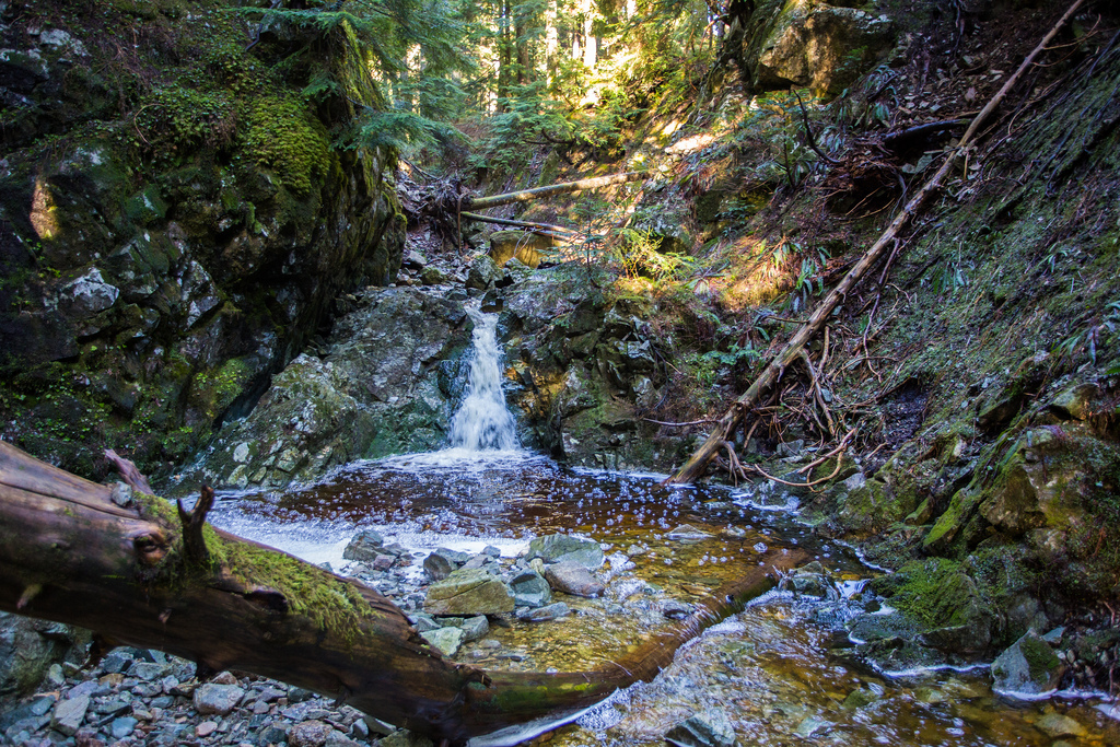Buntzen Creek headwaters