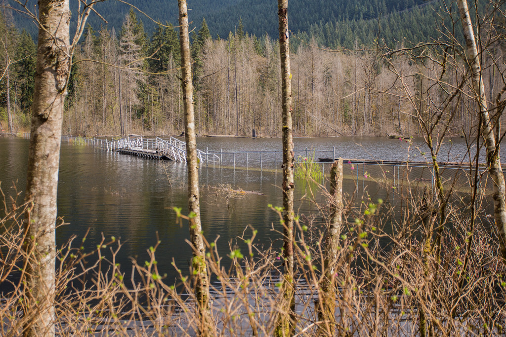 Floating Bridge at flooded Buntzen Lake