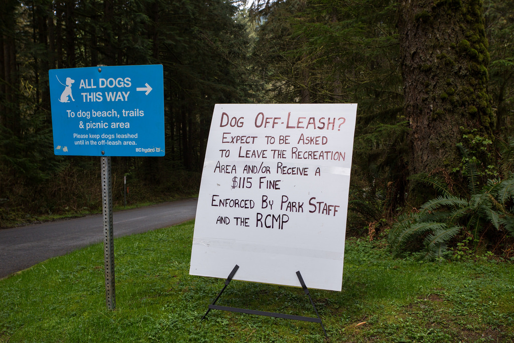 Off leash warning