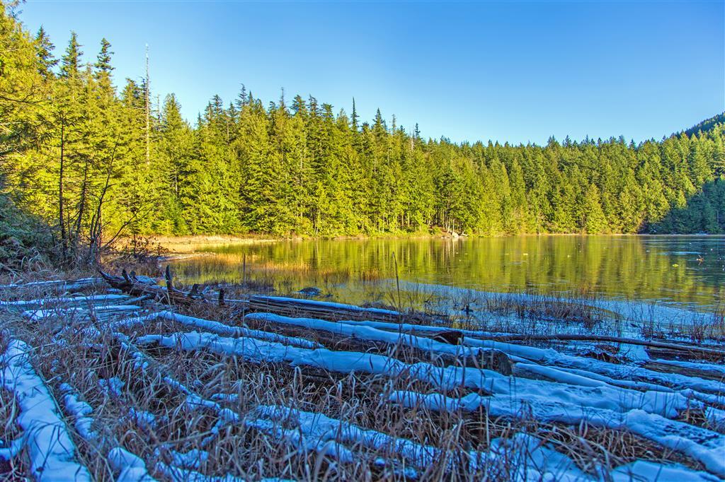 Chadsey Lake