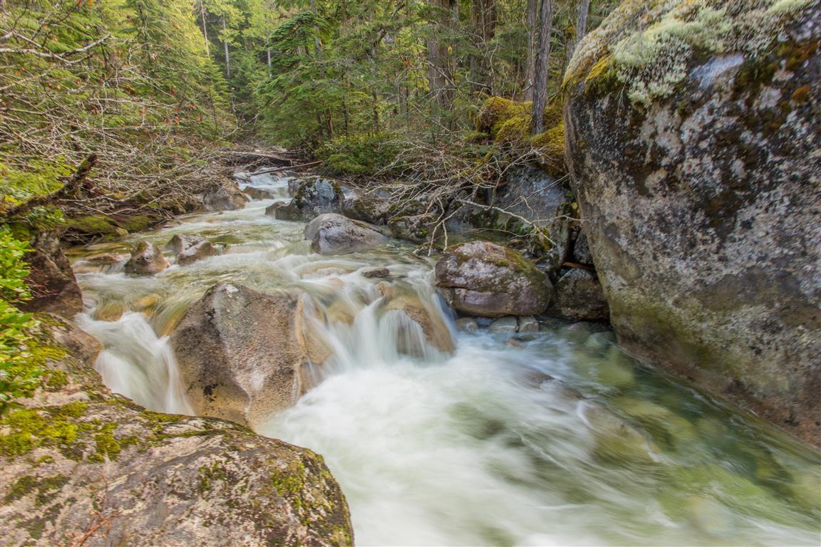 Olesen Creek