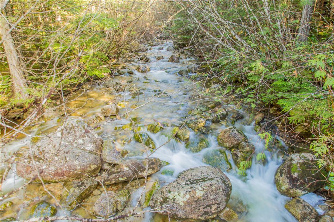 Olesen Creek2