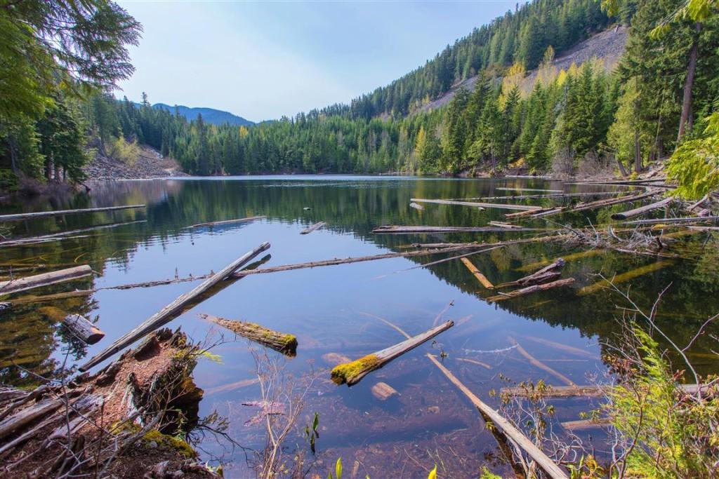 Logger's Lake 2
