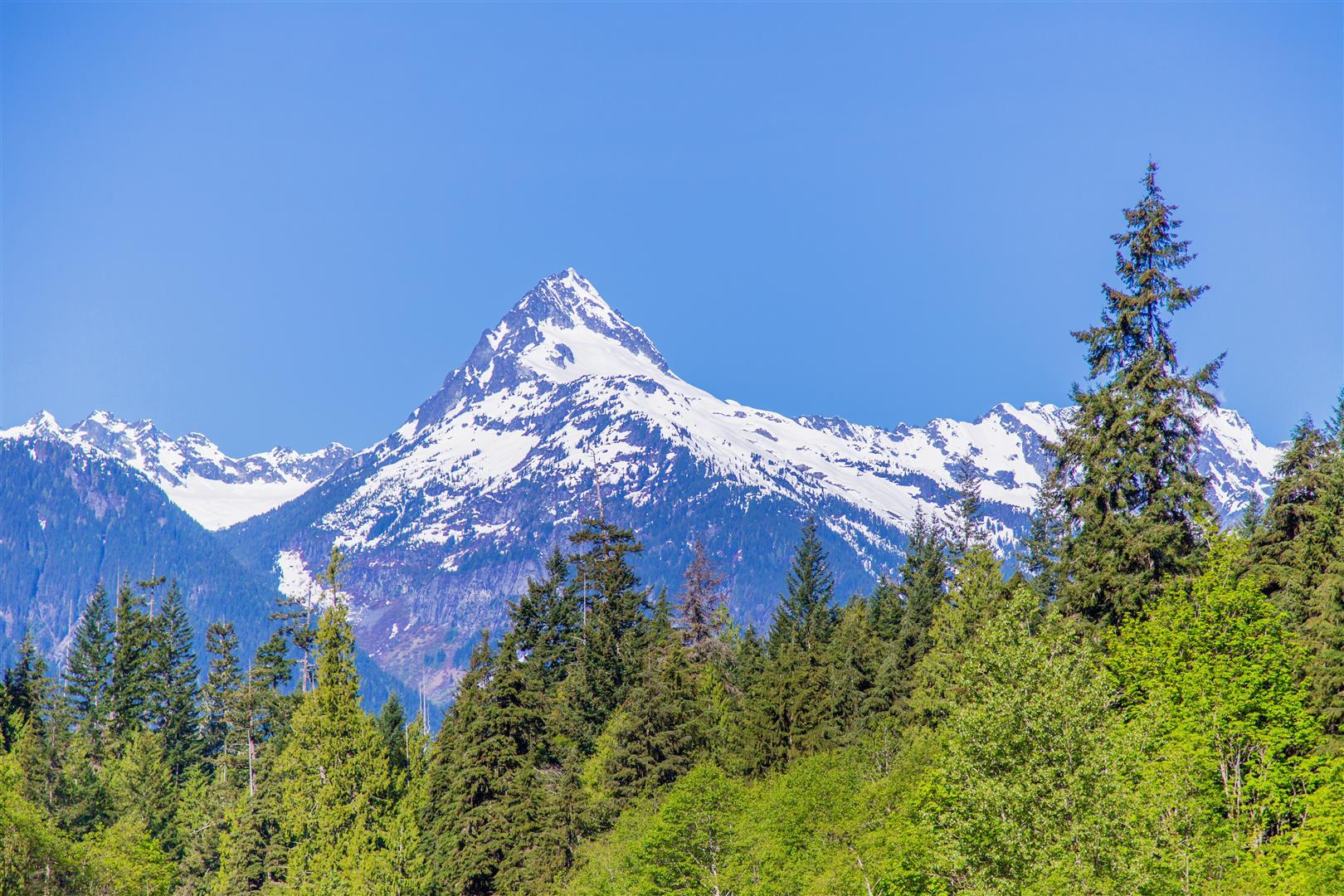 Mt. Alpha