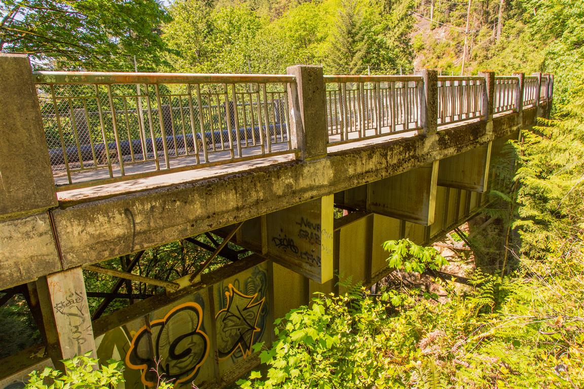 Old Nelson Creek Bridge