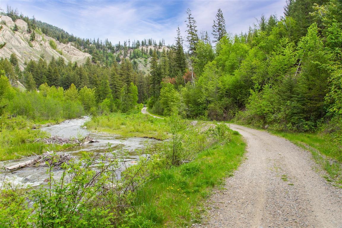 Trail pic