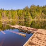 Whyte Lake