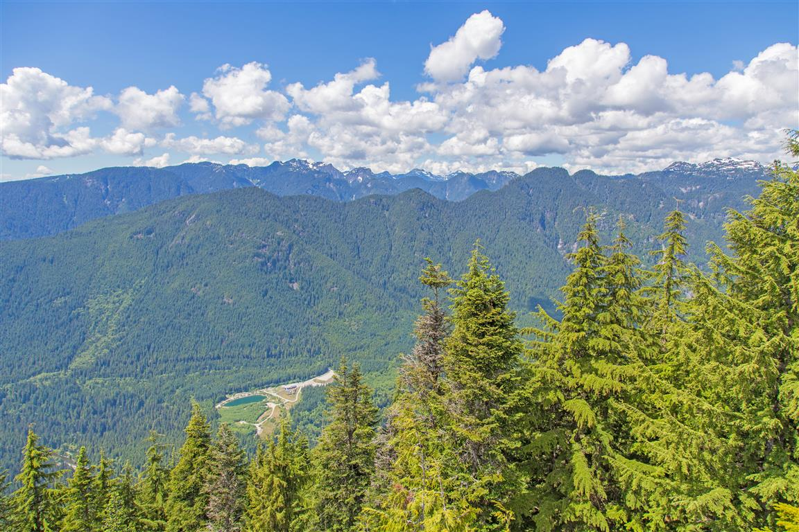 Seymour River Valley