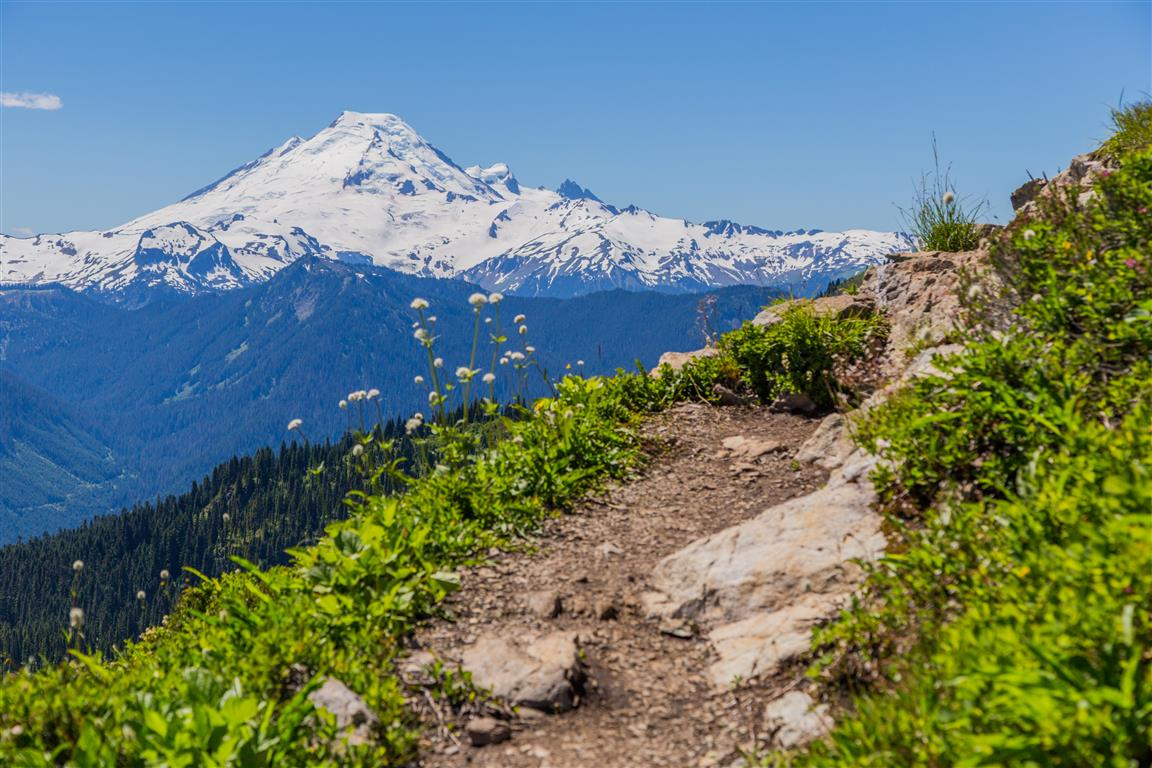 Mt. Baker from the Trail
