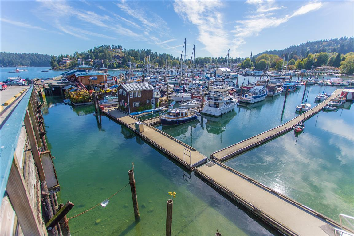 Gibsons Harbour