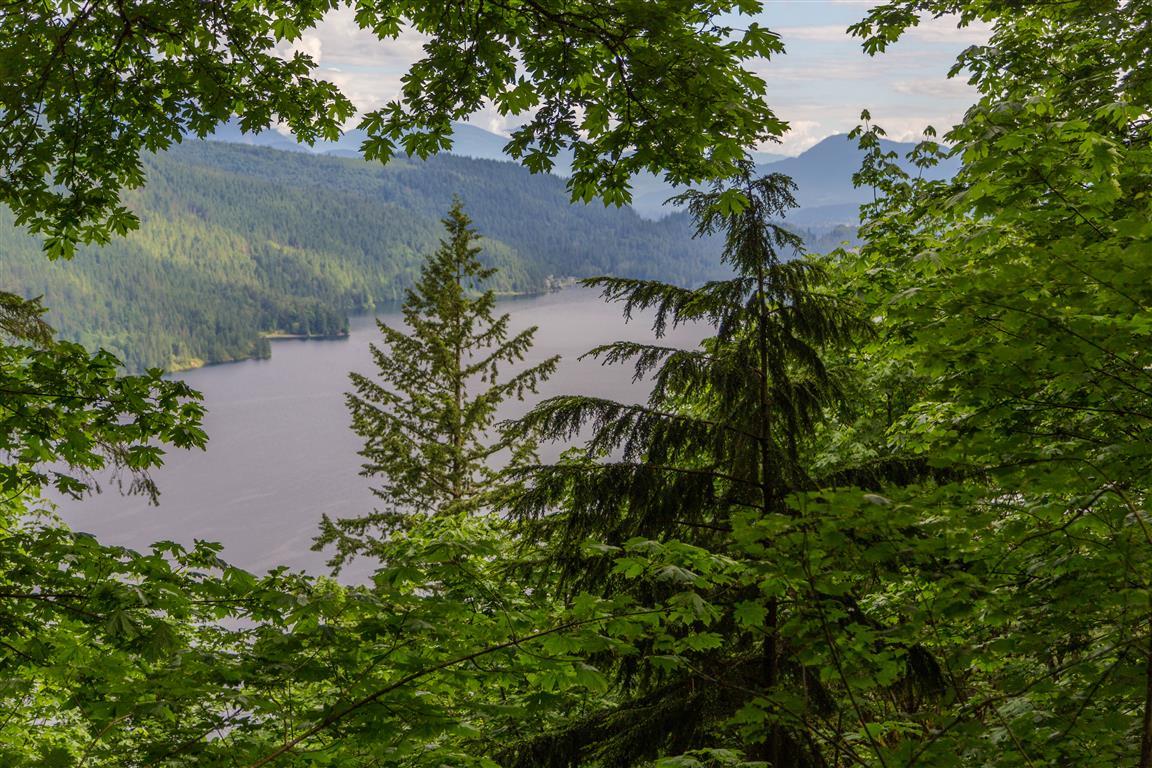 Cultas Lake