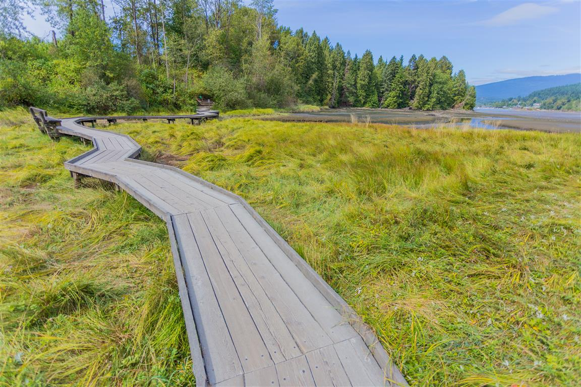 Boardwalk over salt marsh