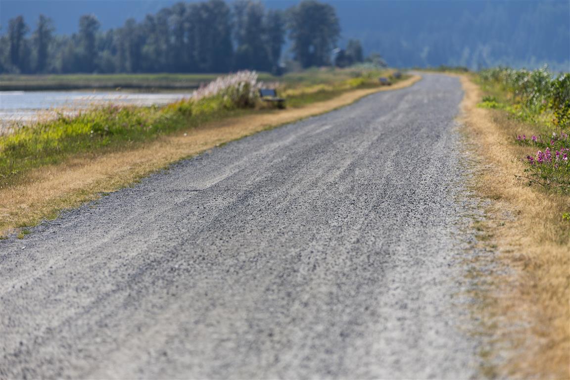 Dyke Path