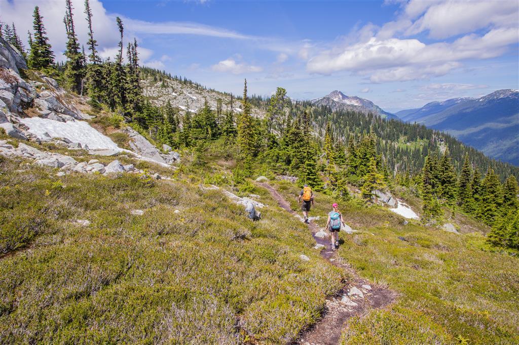 Trail photo 2