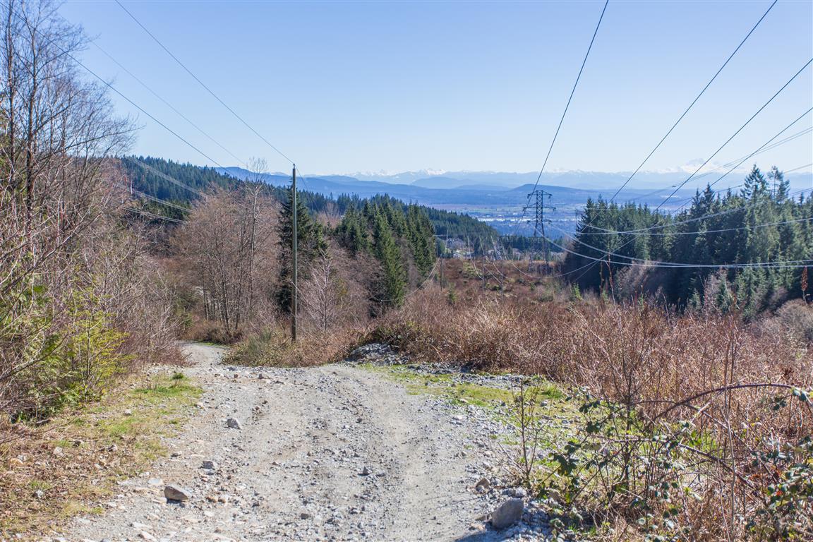 Looking down gravel road