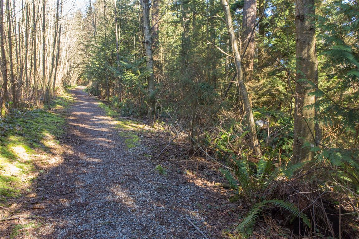 Trail along West Noons Creek