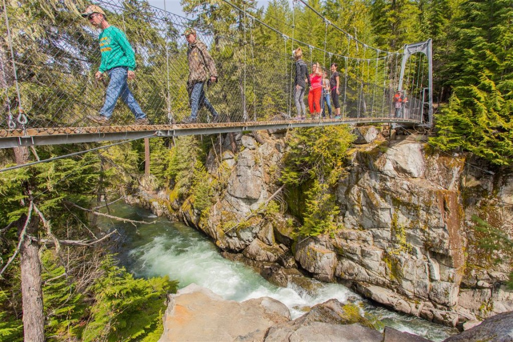 Cheakamus River Suspension Bridge