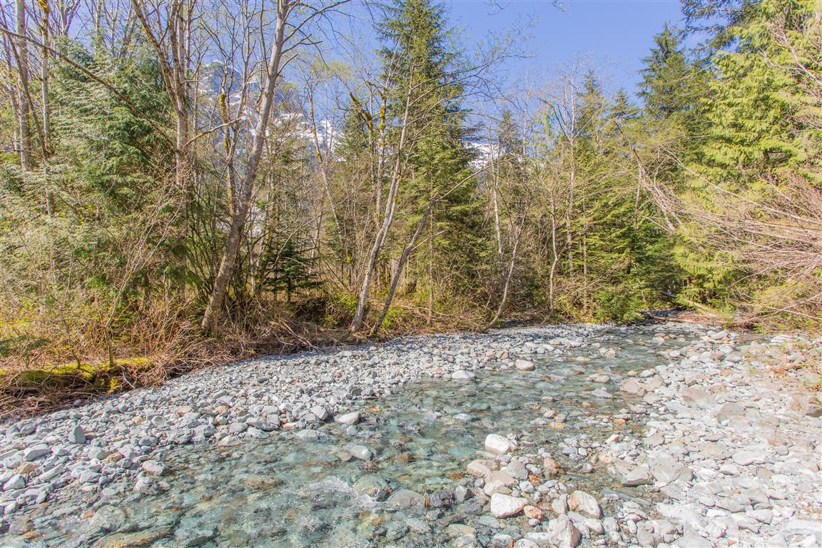 Creek at Alder Flats