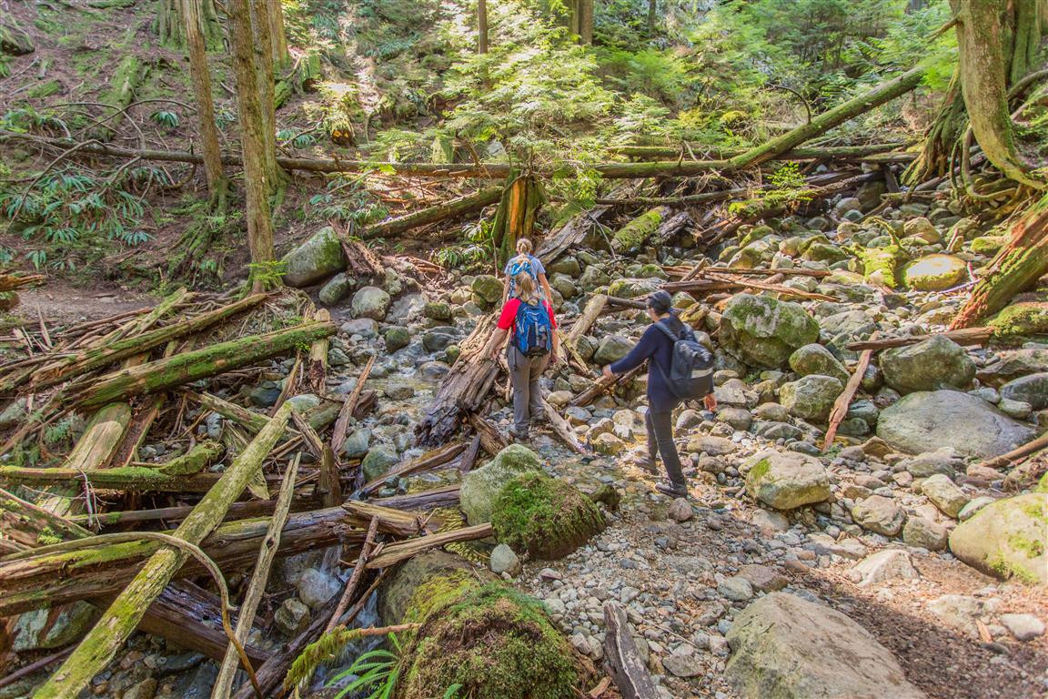 Crossing a creek 2