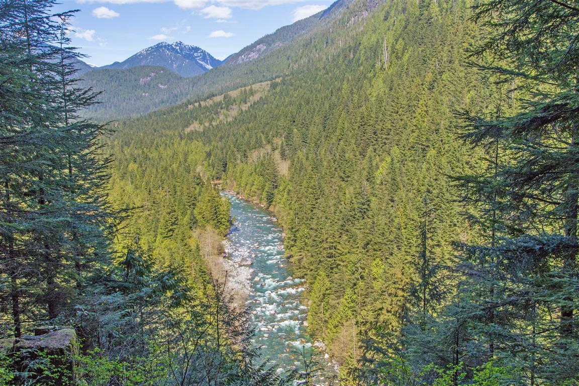 Gold Creek viewpoint