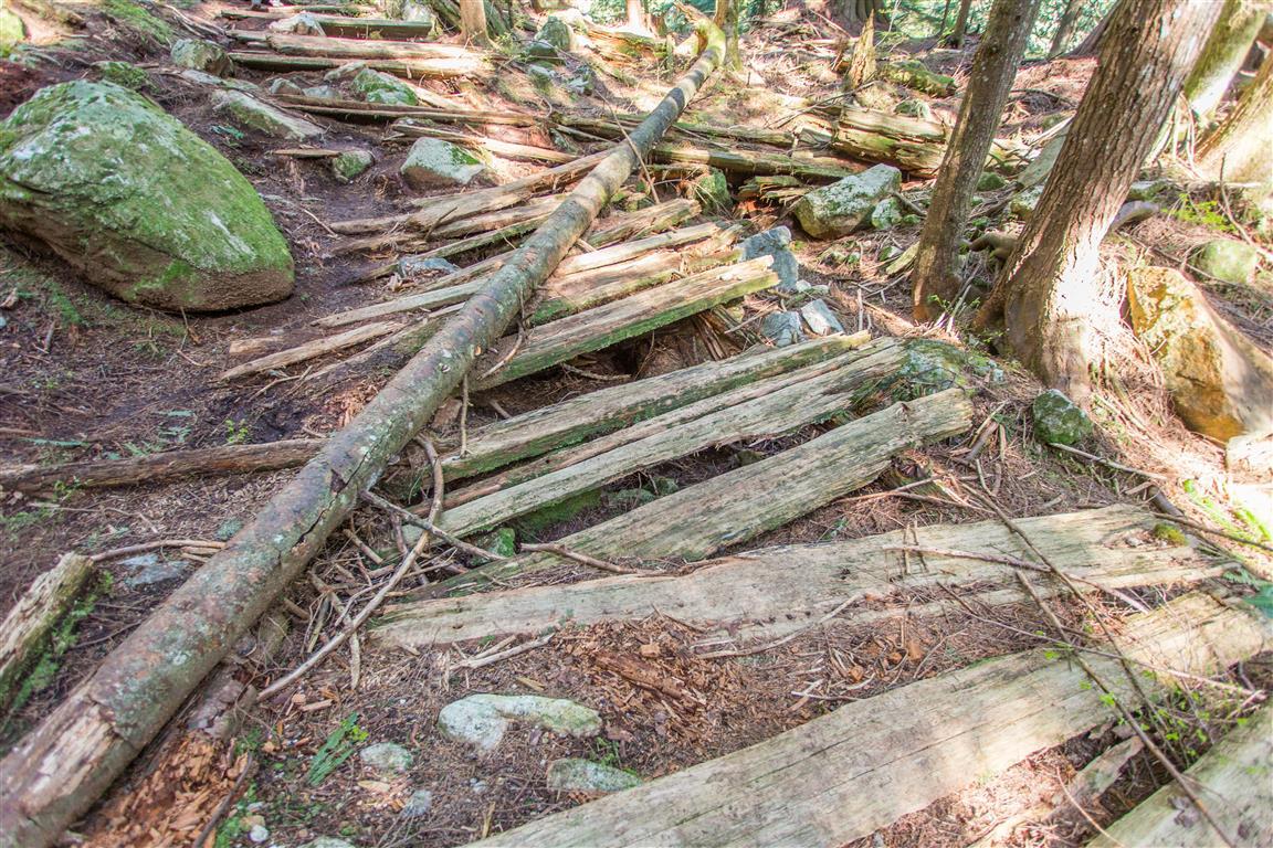 Old wooden boardwalk planks