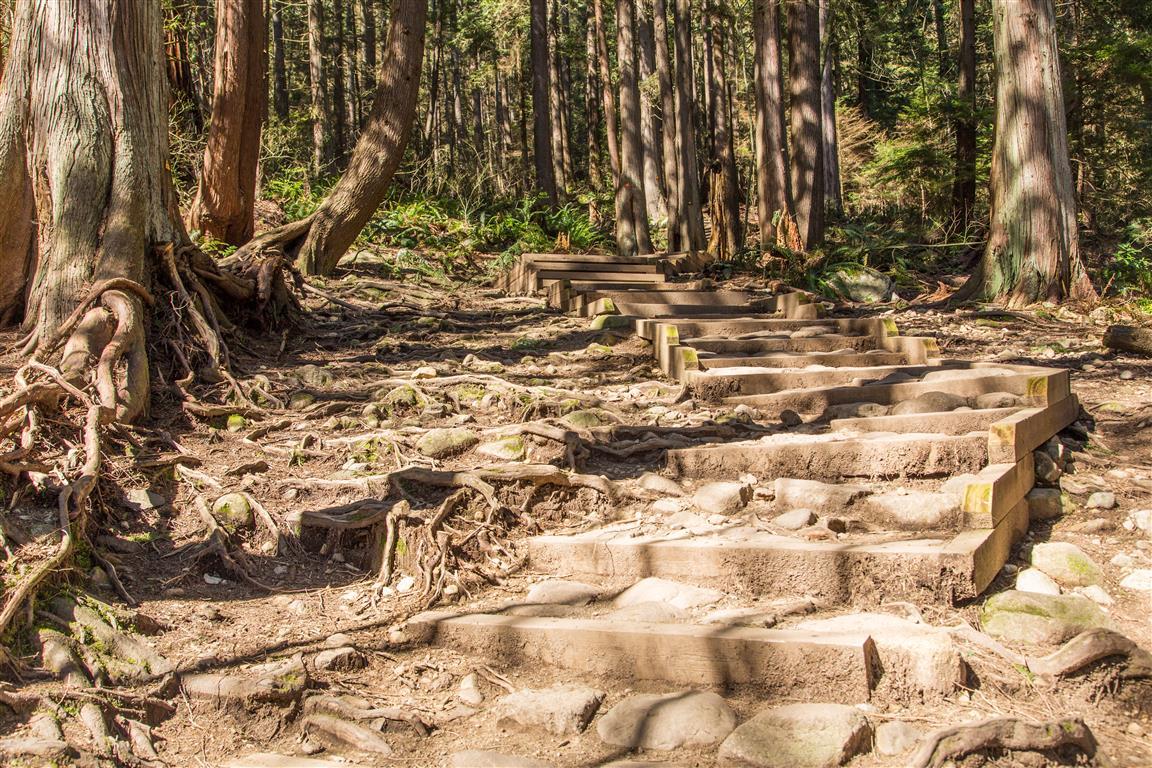 Step on trail