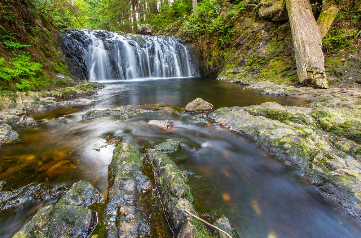 Rolley Falls