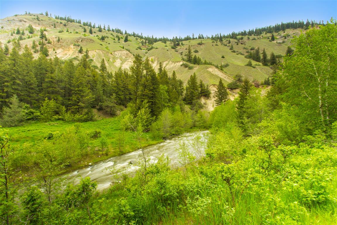 Williams Lake River