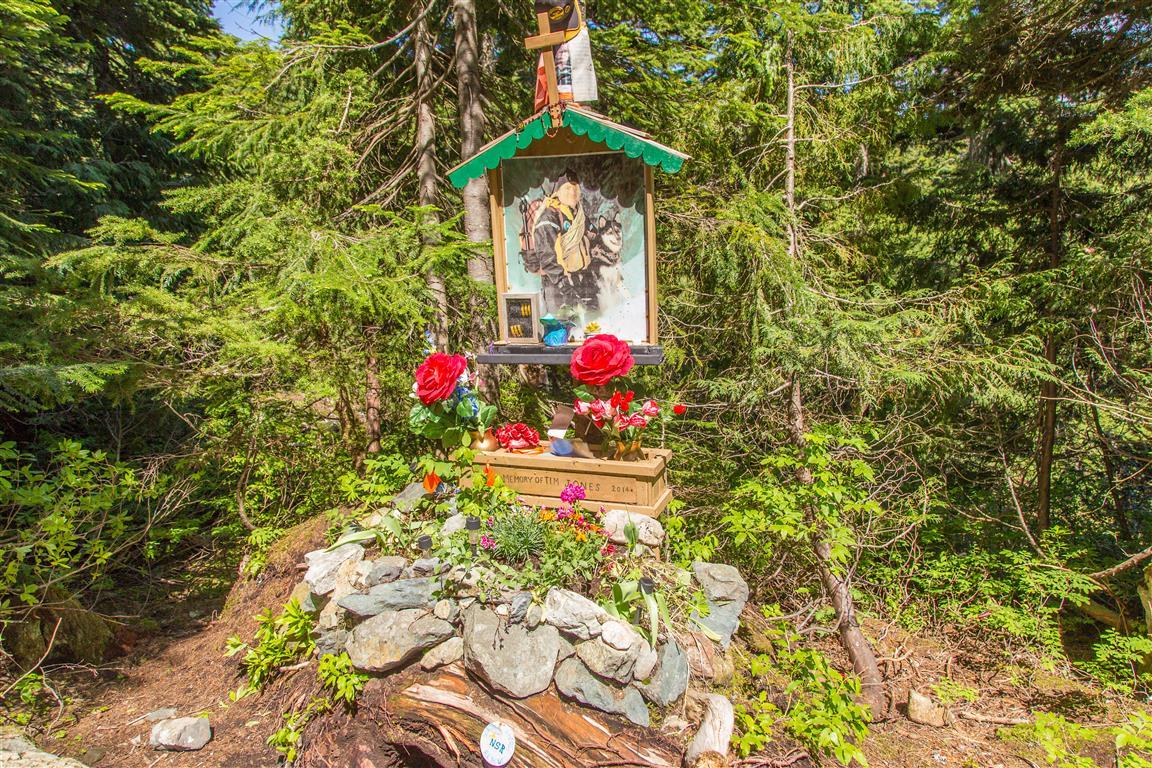 Tim Jones Memorial