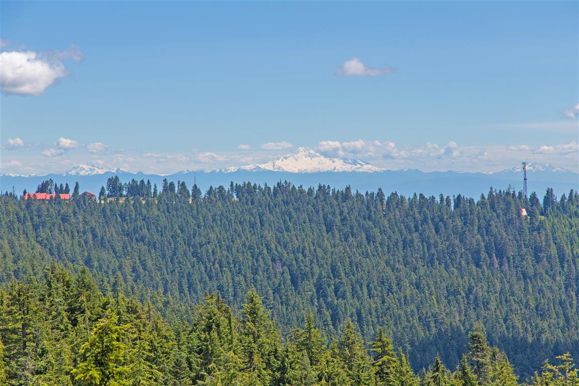 View of Mount Baker from Dog Mountain