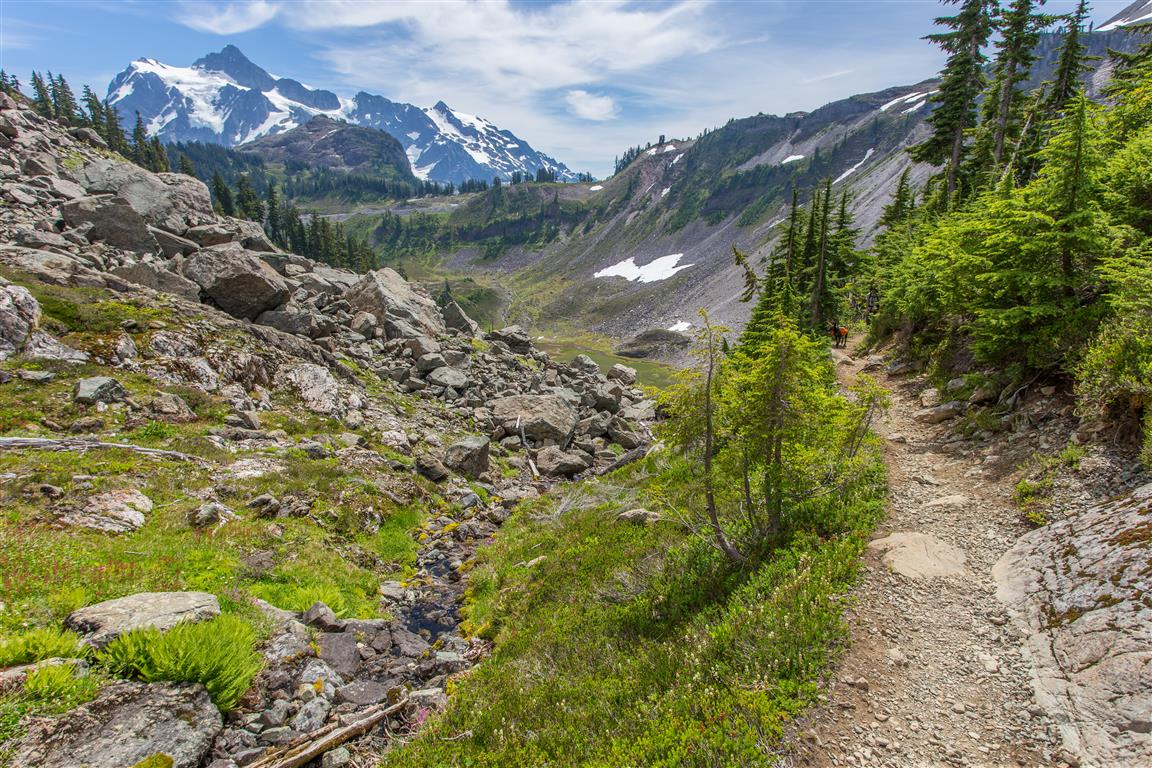 Trail upto Herman Saddle
