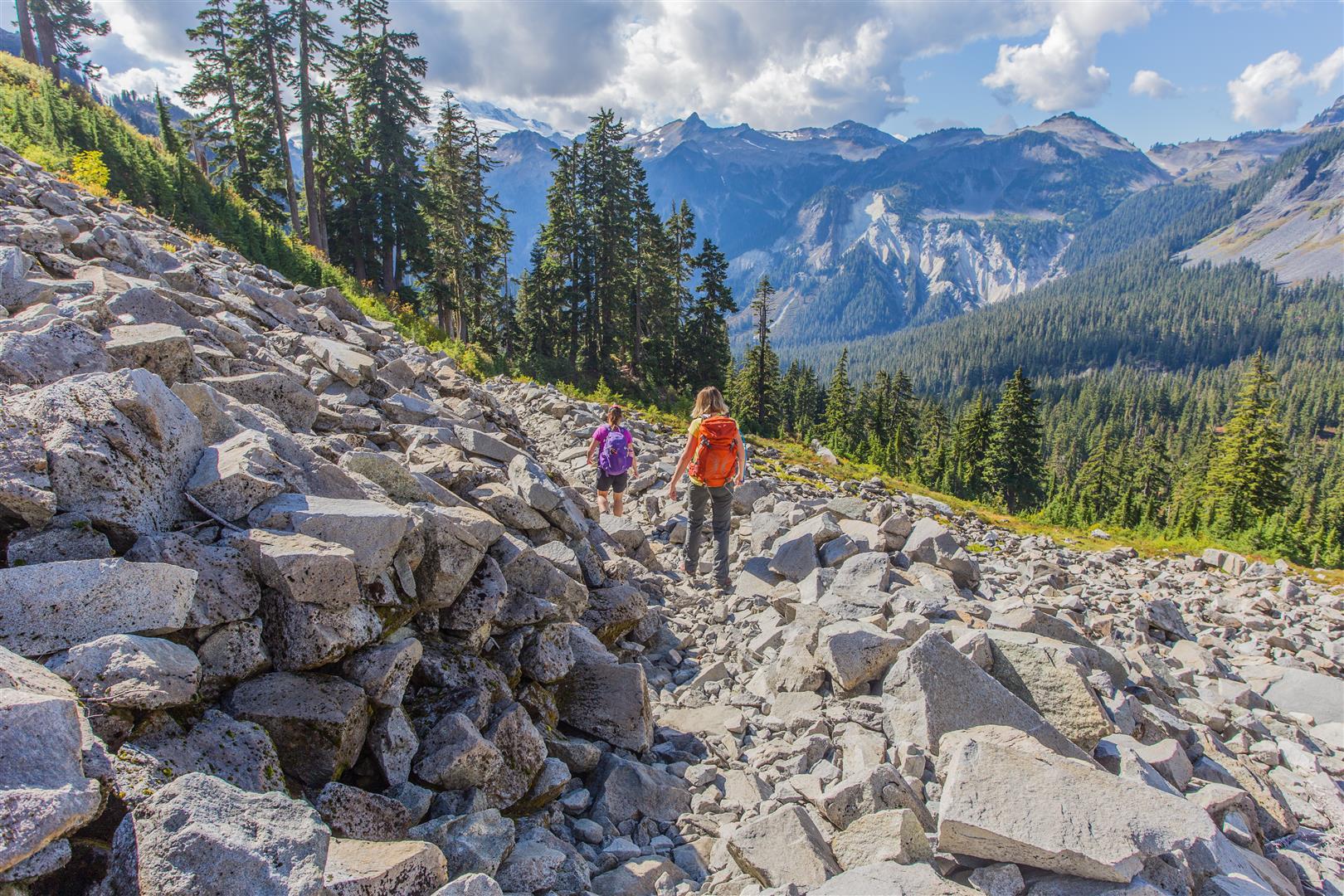 Crossing boulder field