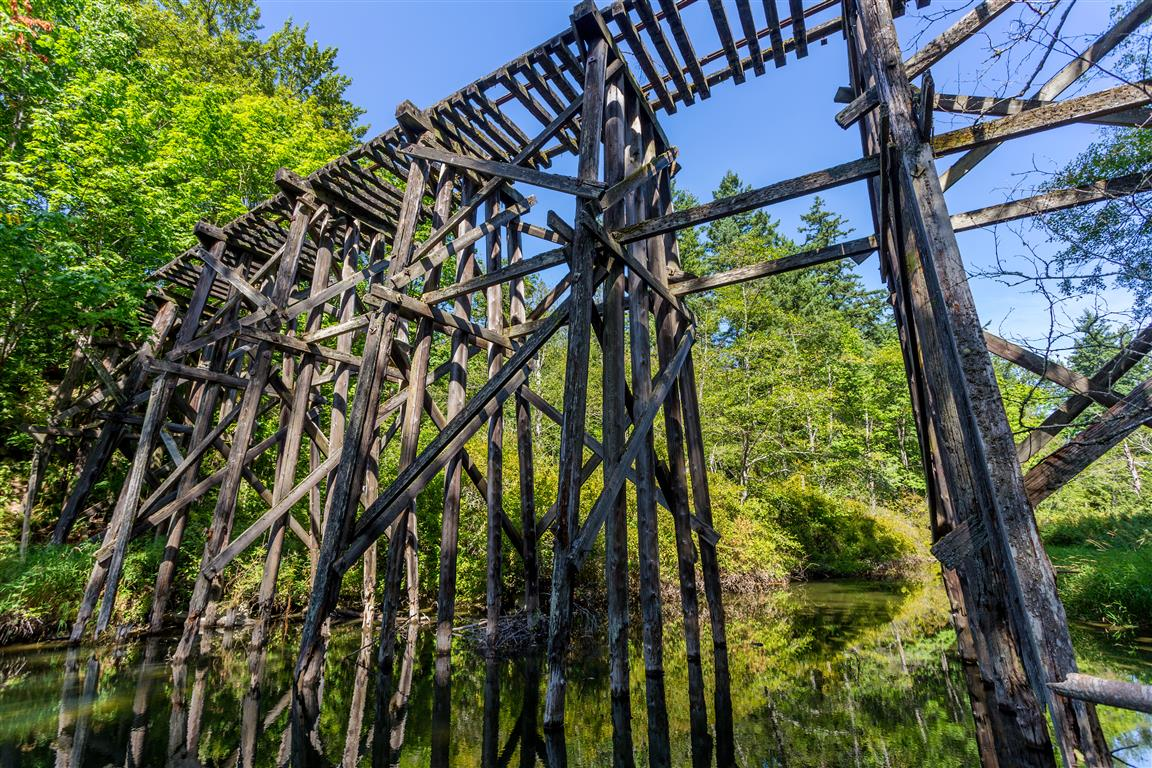 Whatcom Falls Park Trestle