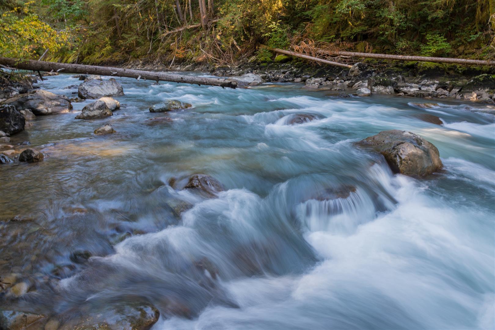 Nooksack River
